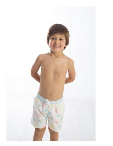 Meia Pata Ice Lolly Swim Shorts